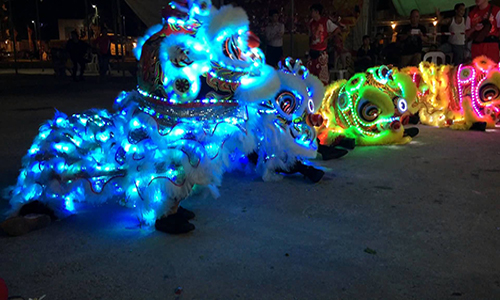 Led Lion Dance